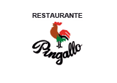 rest-pingallo